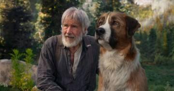 'Il richiamo della foresta': ecco il commovente trailer del film con Harrison Ford