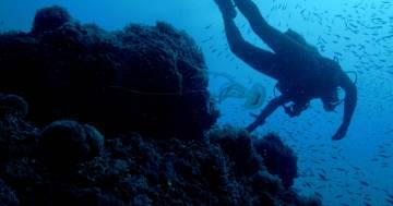 Il Tesoro Nascosto delle Isole Tremiti: lo straordinario documentario di National Geographic