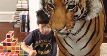 I bambini giocano con i loro animali preferiti grazie alla realtà aumentata di Google