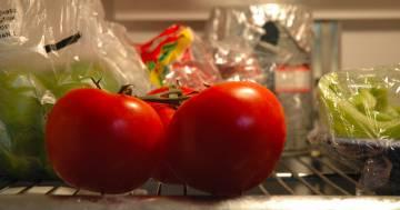 Conservare i pomodori in frigo è sbagliato, ecco perché