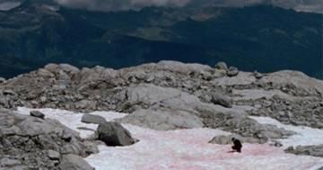 La neve rosa: il colore particolare sui ghiacciai delle Alpi