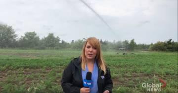 Viene colpita dall'irrigatore durante il servizio: la reazione della giornalista è esilarante