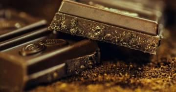 Entro il 2038 potrebbe non esserci più cioccolato: lo dice questo studio