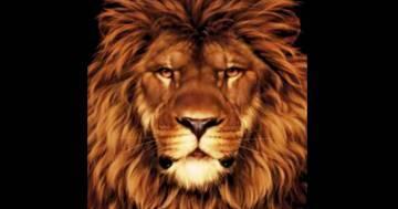 Il test visivo del topo nel leone: riuscite a risolverlo?