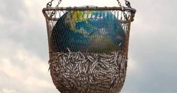 'Seaspiracy' il docufilm mette a nudo lo sfruttamento del mare