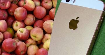 Ordina un sacchetto di mele e ci trova dentro un iPhone: ecco cosa è successo