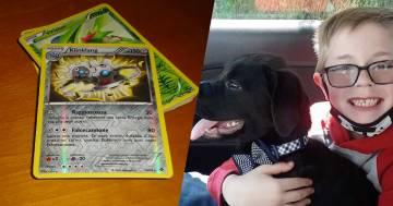 Vende la sua collezione di carte per curare il cane: la Pokemon gliene regala di nuove