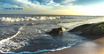 Giornata Mondiale degli Oceani: si inaugura il decennio per la salvaguardia dei nostri mari