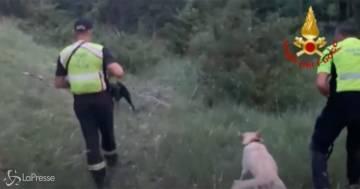 Nicola Tanturli sta bene, il bambino di due anni è stato ritrovato a 2,5 km da casa
