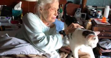 Penny, la signora di 101 anni che ha adottato il gatto più anziano in un rifugio