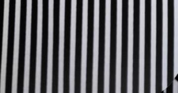 Effetto McCollough: l'illusione ottica nasconde un animale